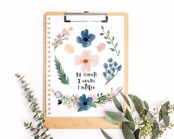 Free Blush & Navy Watercolor Flower PNG - Fox + Hazel