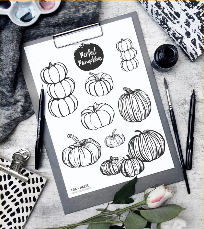 Free Pumpkin Illustrations Printable - Fox + Hazel