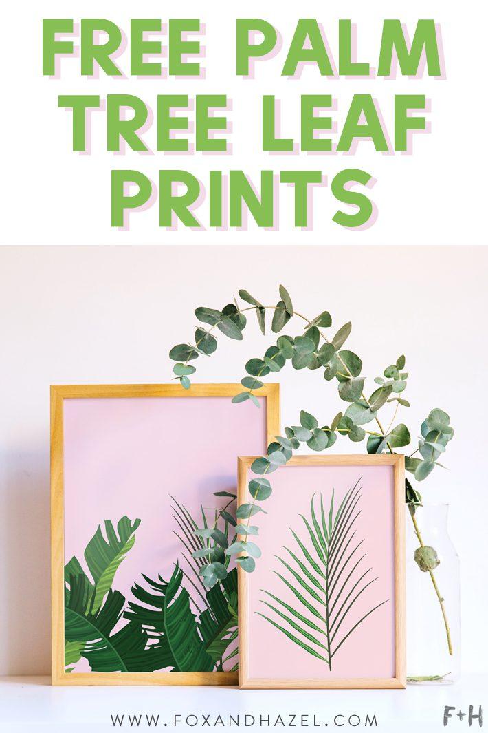 3 Free Palm Tree Leaf Prints In Pink White Fox Hazel