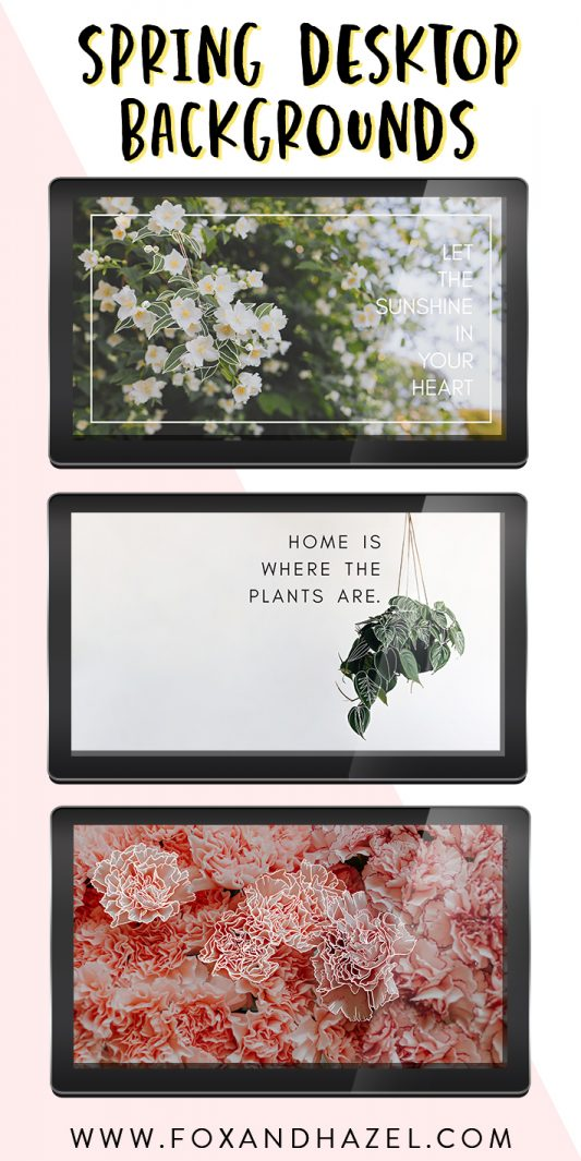 three spring images on computer monitors